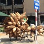 ベトナムで見つけた、大量のカゴチャリ